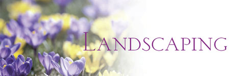 Land Scaping: Want to Save Money on Your Spring Plantings...